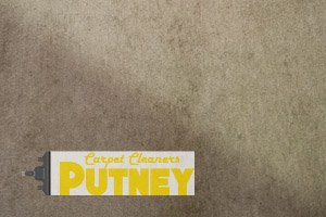Carpet Cleaners Putney